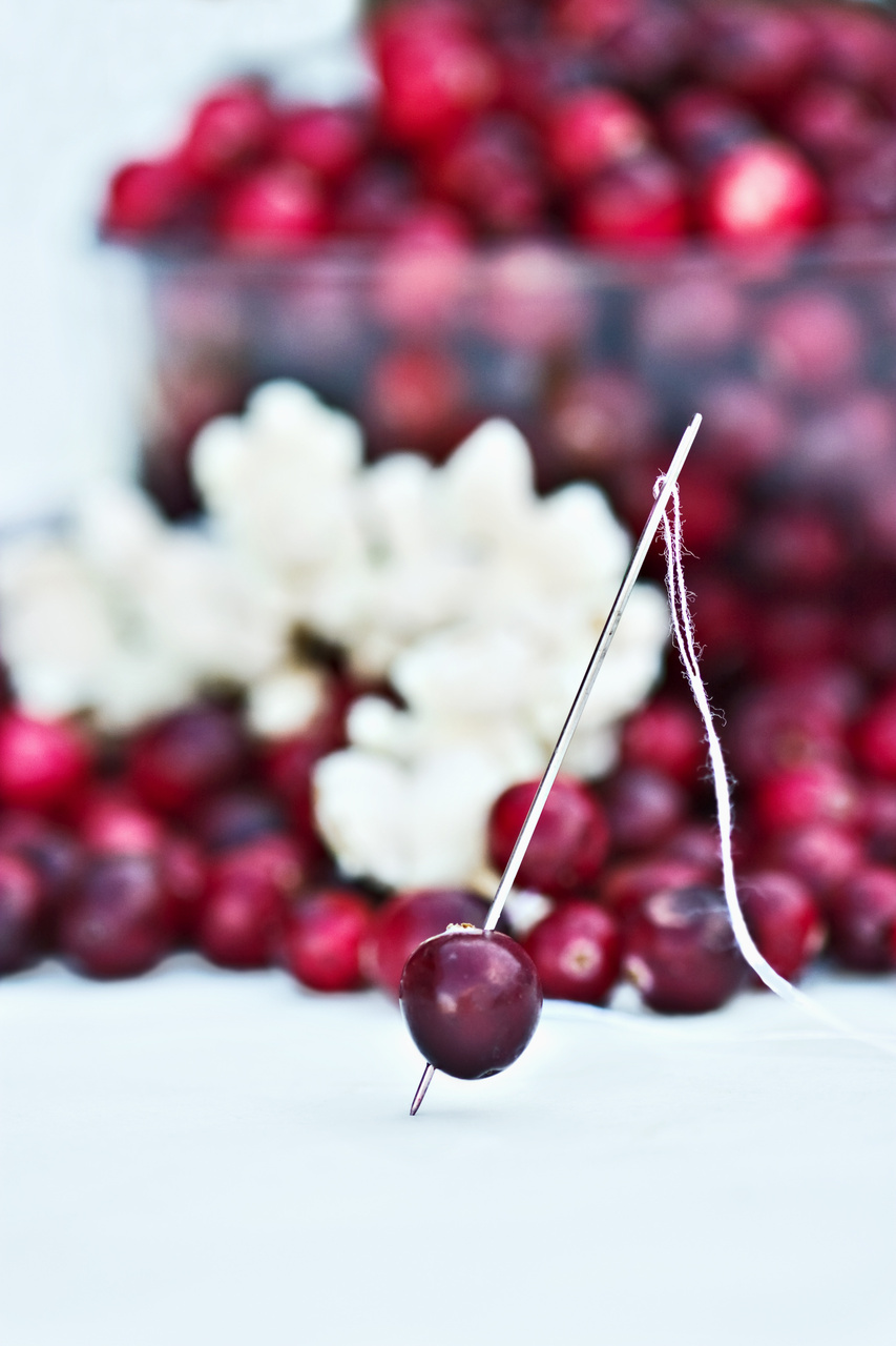 Holiday decorating with cranberries for Artificial cranberries for decoration