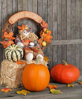 - Outdoor Thanksgiving Decorations
