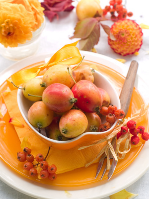 Thanksgiving table setting ideas, DIY place setting