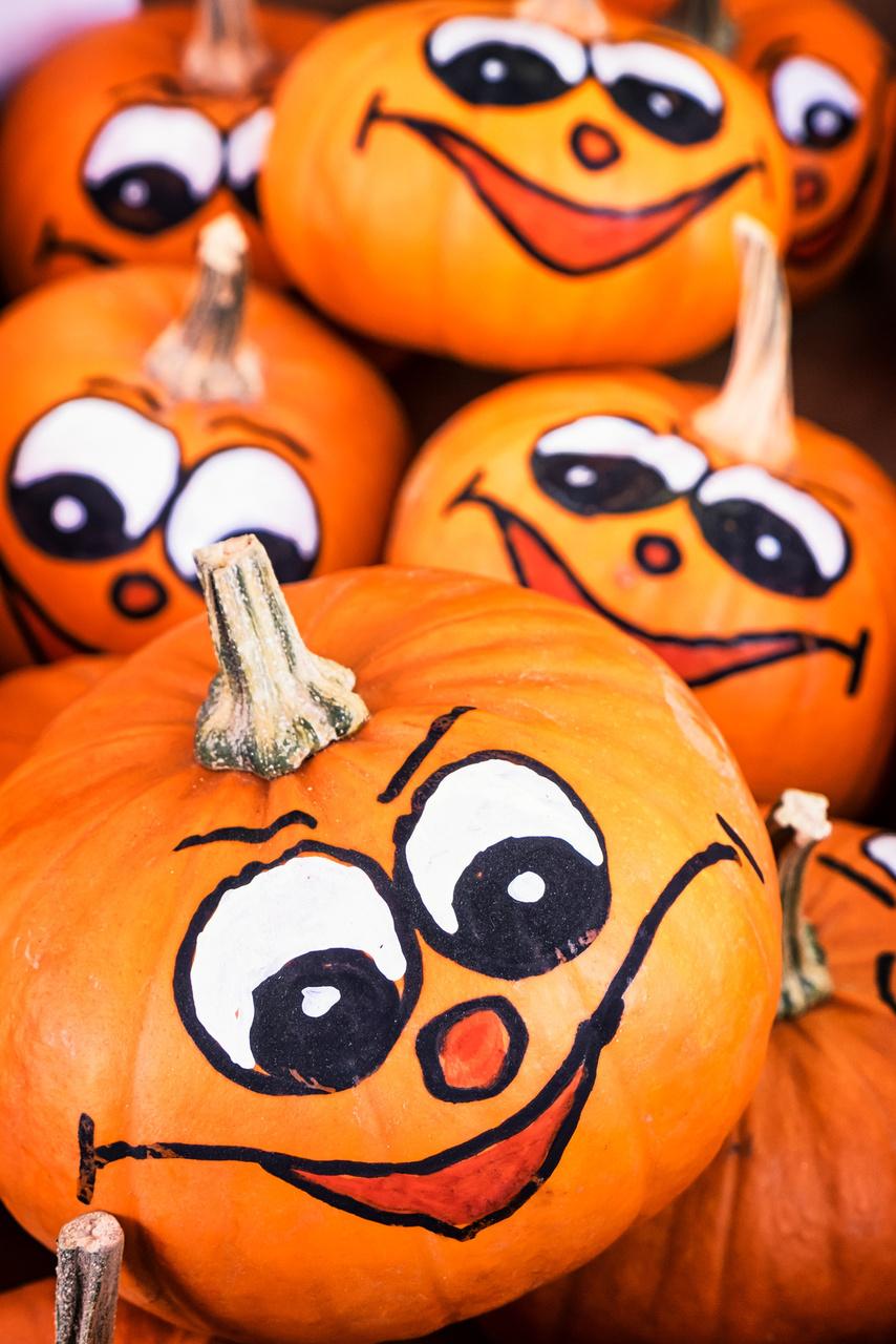Pumpkin Decorating With Hallmark Artists Thinkmakeshareblog Com