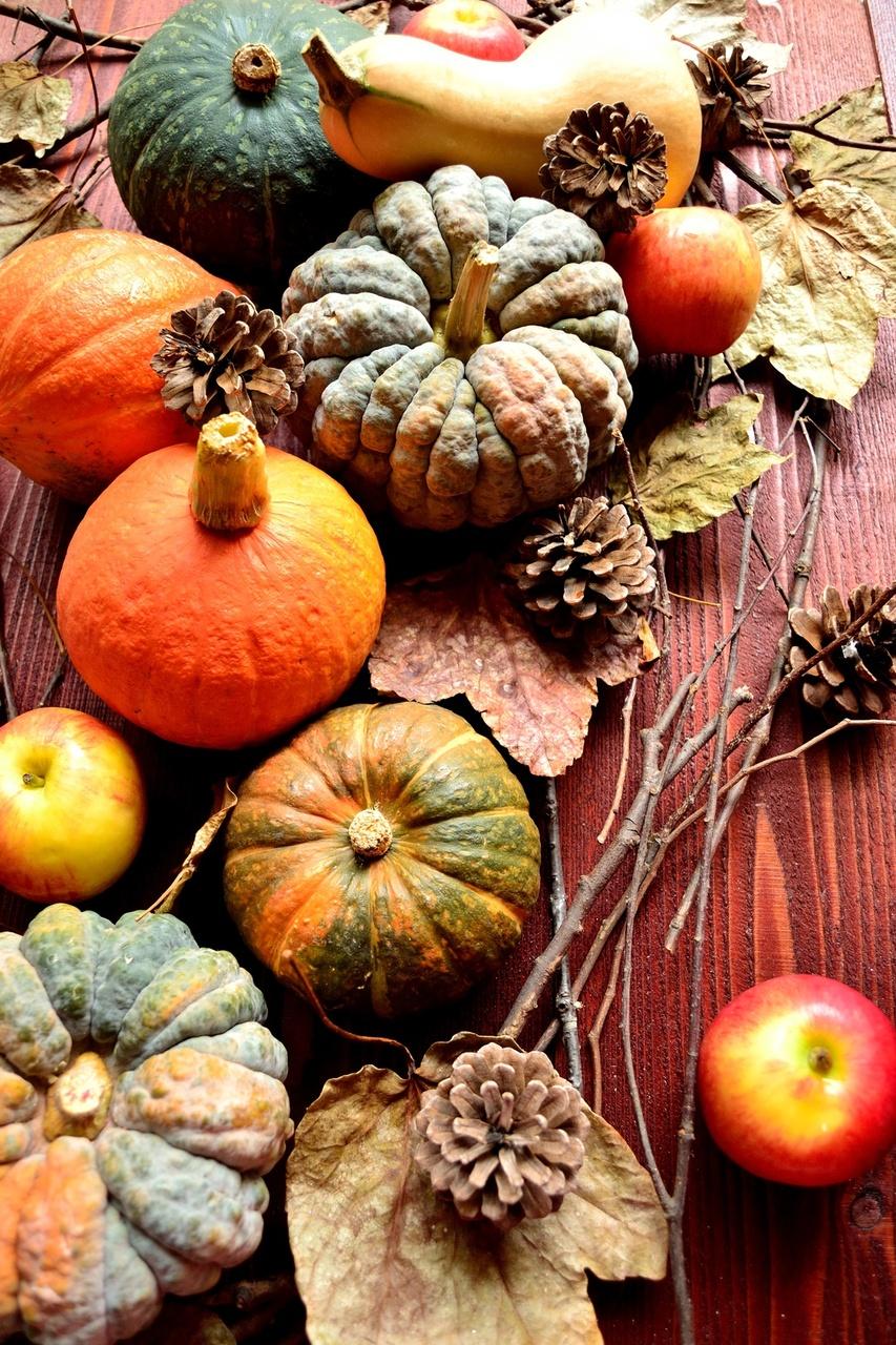 Fall Party Themes on Food Bingo